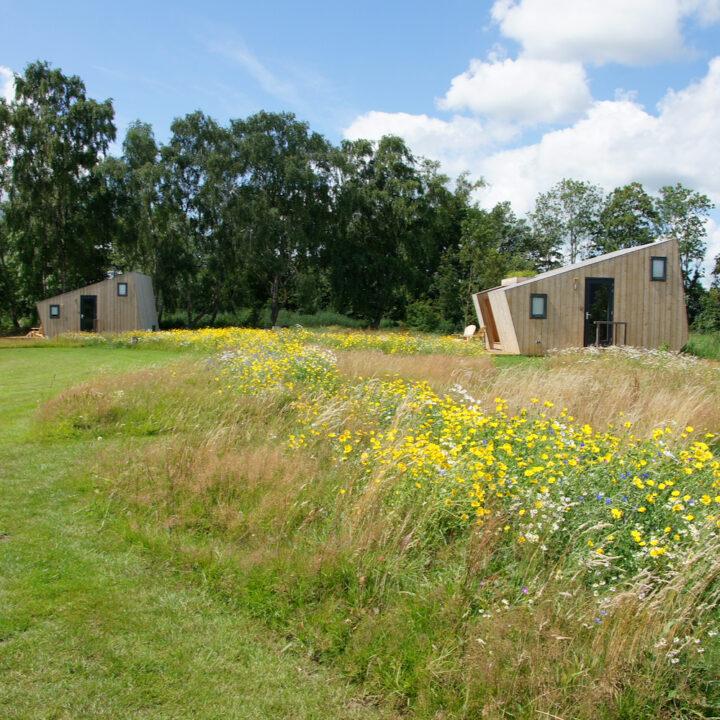 Duurzame huisjes aan het water in Friesland