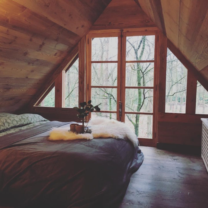 Bijzonder overnachten in een boomhut