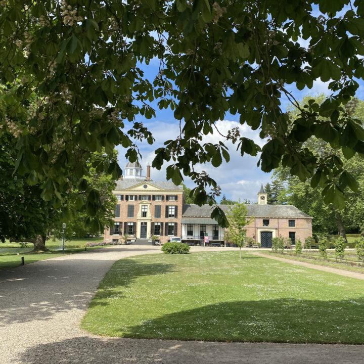Kasteel Rosendael tussen de bomen door