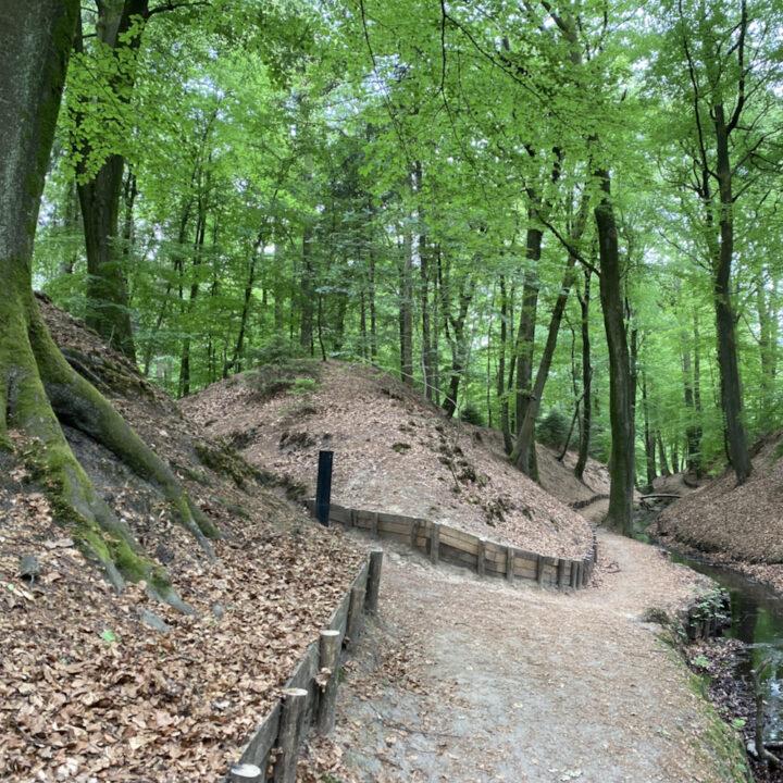 Wandelen langs de beek op Landgoed Beekhuzien