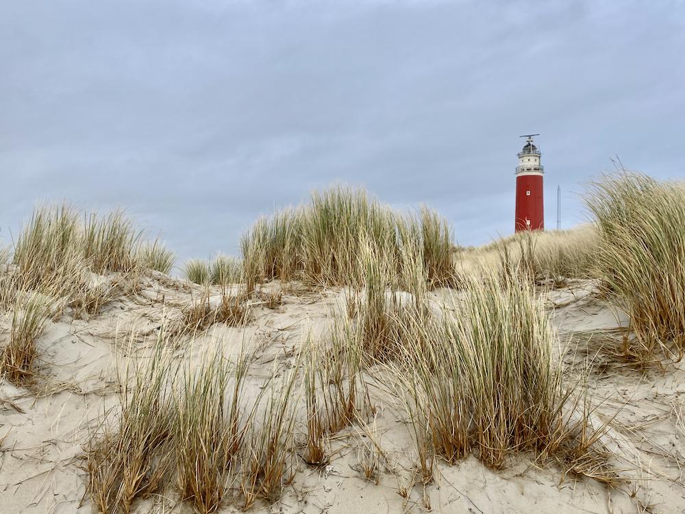 Vuurtoren op Texel gezien vanuit de duinen