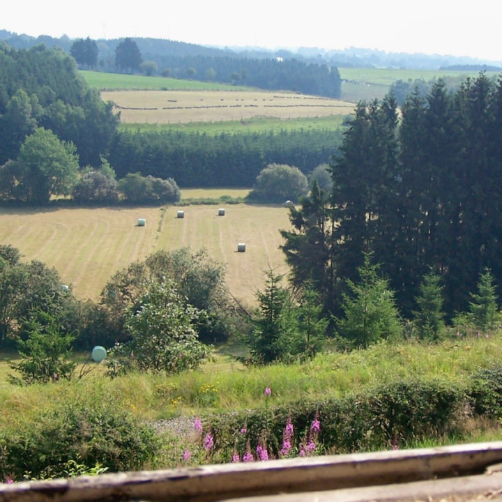 Weekend in de Ardennen met uitzicht op een groene omgeving met bomen en velden