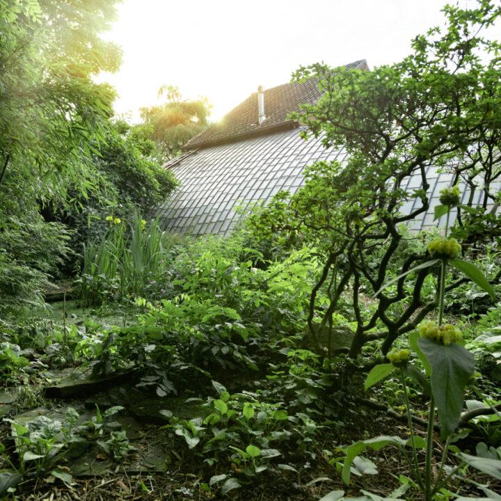 Historische kas in een weelderige tuin