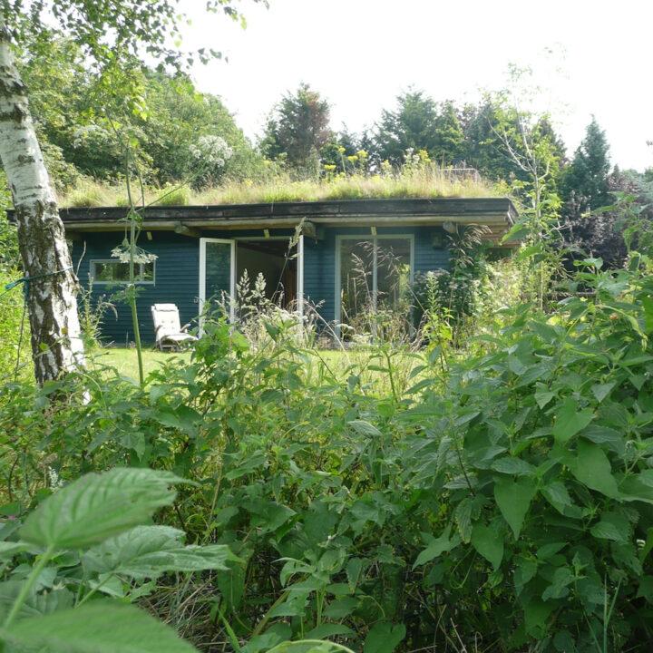 Houten huisje met gras op het dak