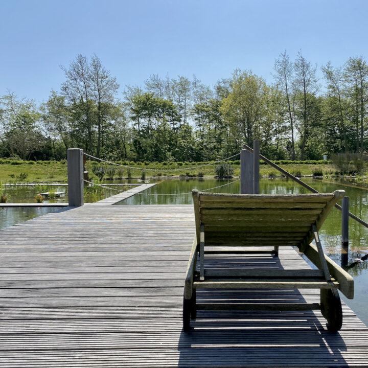 Ecologische zwemvijver bij accommodatie op Texel