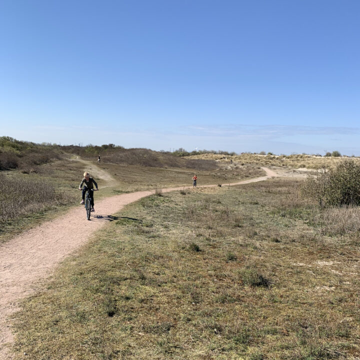 Duinen langs de kust in Zuid-Holland