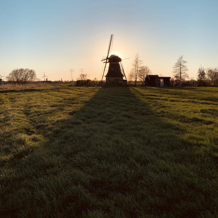 De molen bij zonsopgang