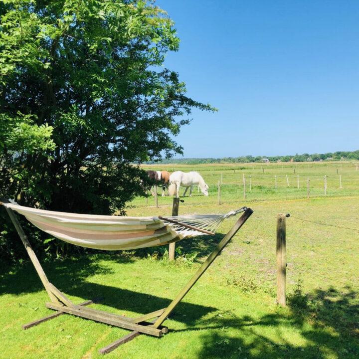 Hangmat aan de rand van de weilanden met zicht op de natuur