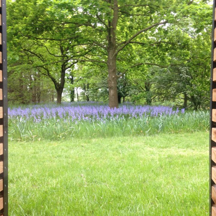 Tuin met hoog gras en paarse bloemen bij het vakantiehuis