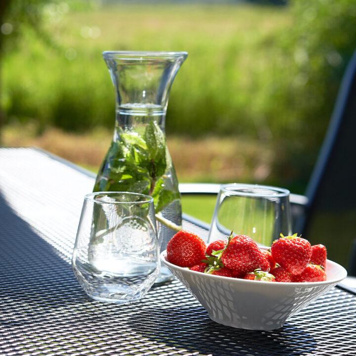 Aardbeien en muntwater op het terras