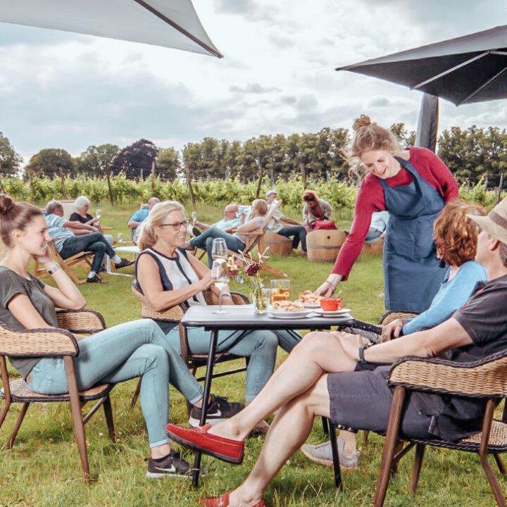 Wijn proeverij in het gras aan de rand van een wijngaard