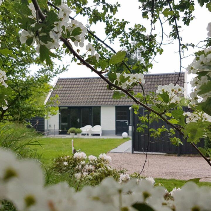 Bloesem in de tuin van het huisje