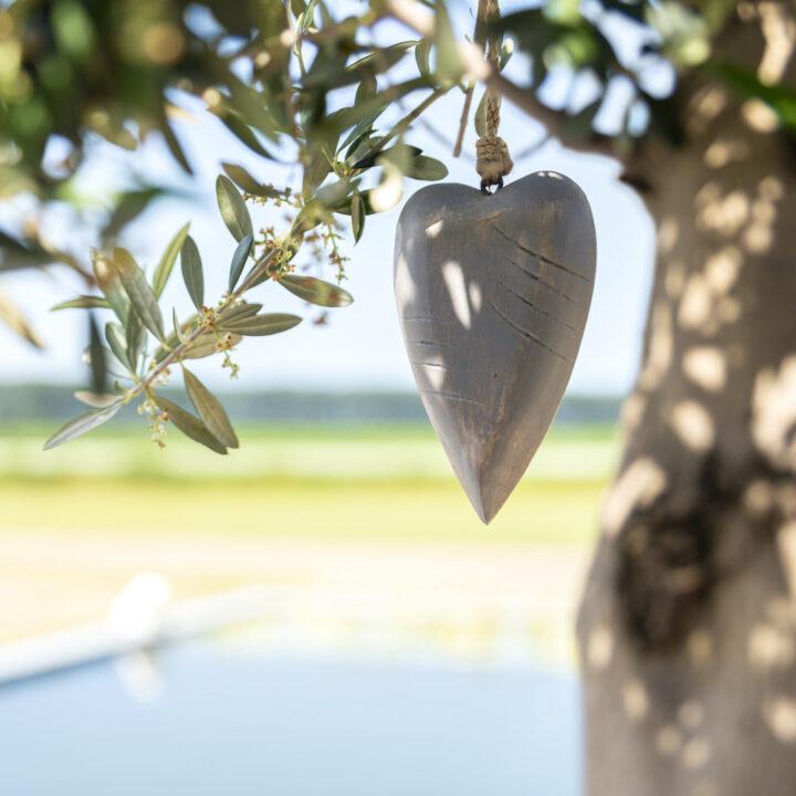 Hartje in de olijfboom