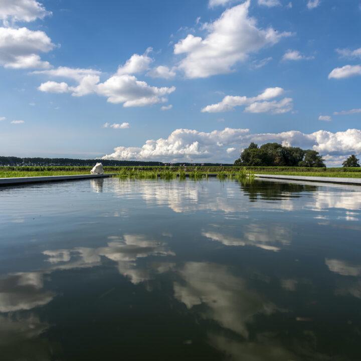 Zwemvijver in de tuin van de B&B in Zeeland