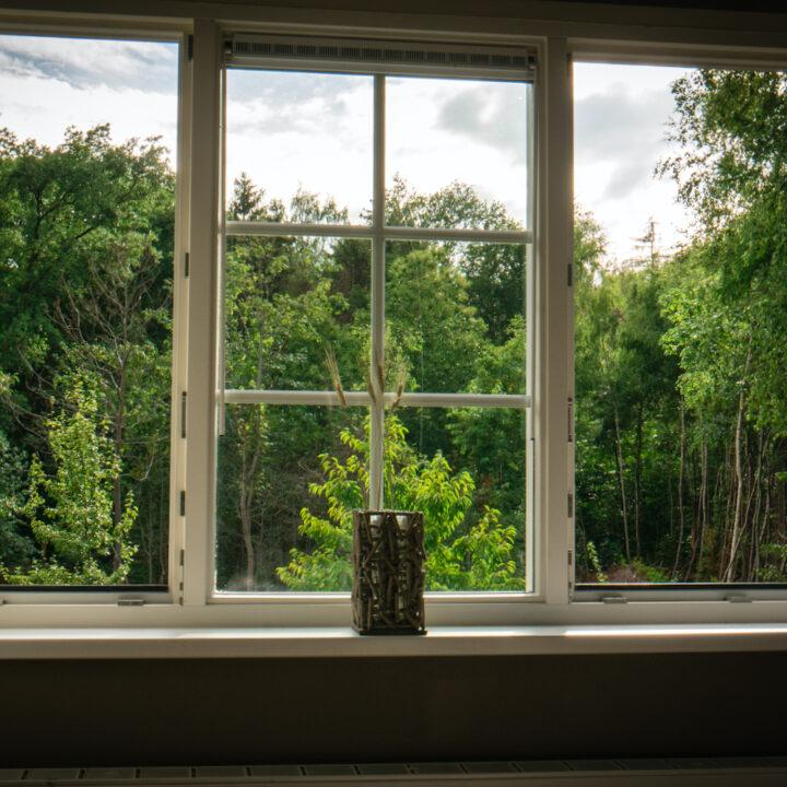 Raam met uitzicht op de bomenrij bij vakantiehuis in Zeeland
