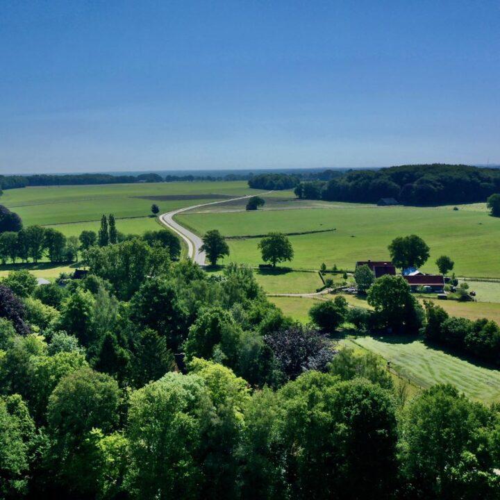Twents landschap in alle tinten groen