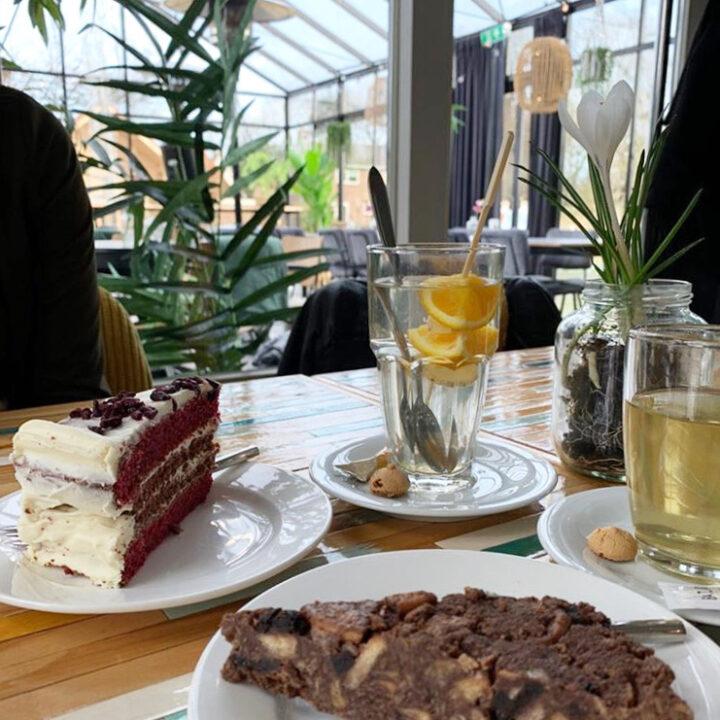 Thee en taart bij Marenland