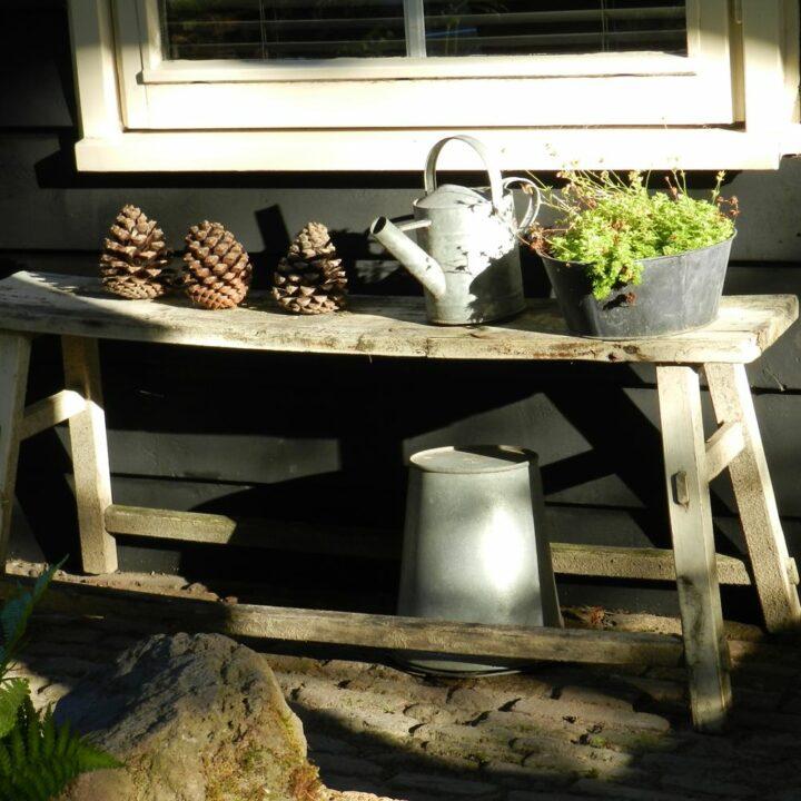 Tafeltje buiten met dennenappels en gieter en emmer
