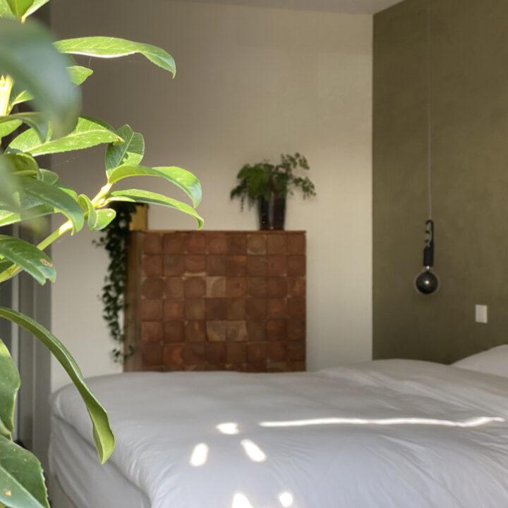 B&B kamer met groene muur en planten