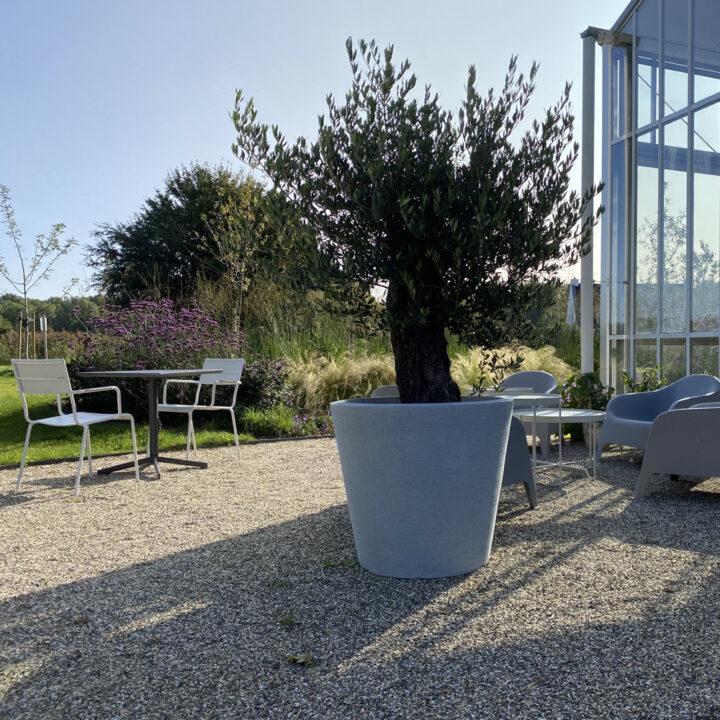 Terras met witte stoelen, olijfboom en grijze Ikea fauteuils