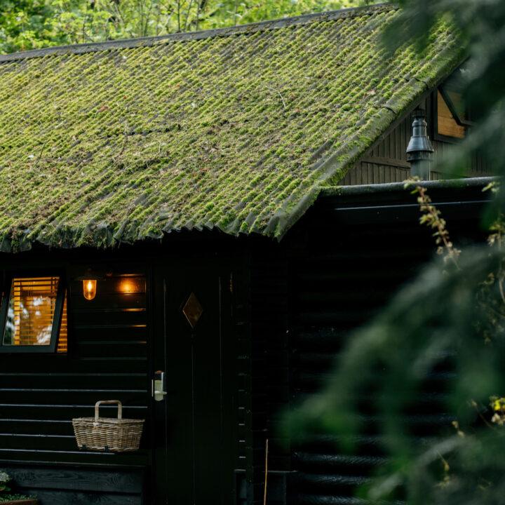 Zwart houten huisje met mos op het dak