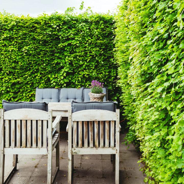 Eigen terras in de tuin bij de B&B in Drenthe