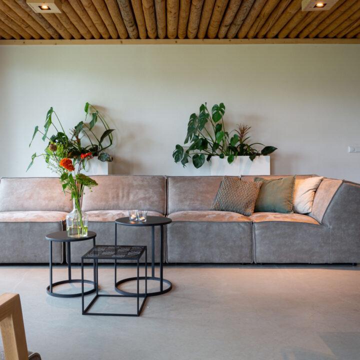 Grote grijze zitbank met planten erboven aan de wand