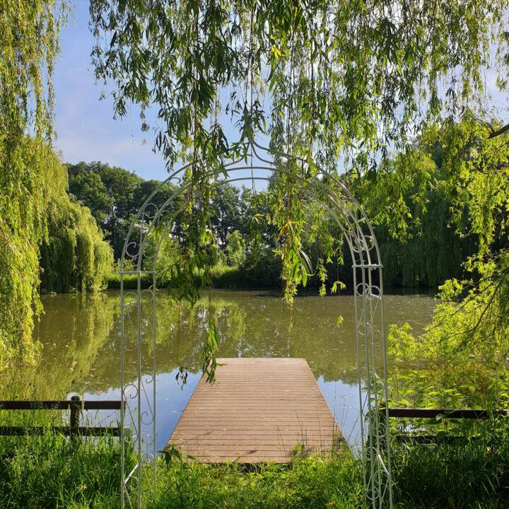 Vijver met steiger in de tuin van de Familie Kip