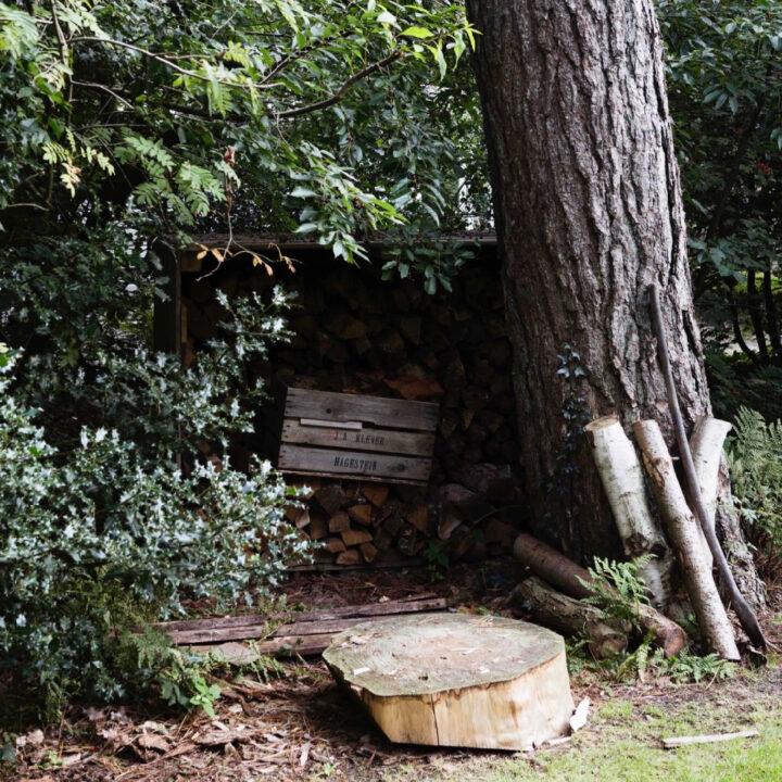 Hout voor de kachel in het boshuisje in Oudemirdum