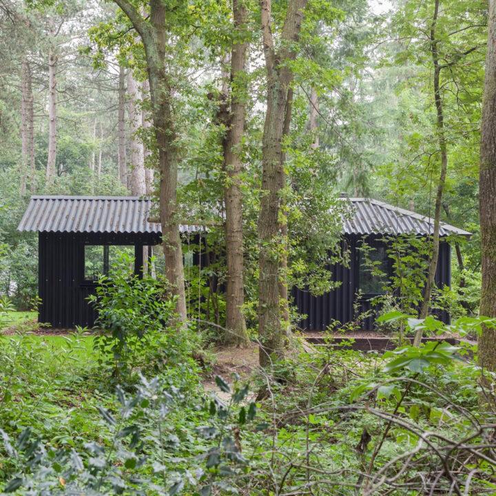 Boshuisje Oudemirdum ligt midden in het bos in Friesland
