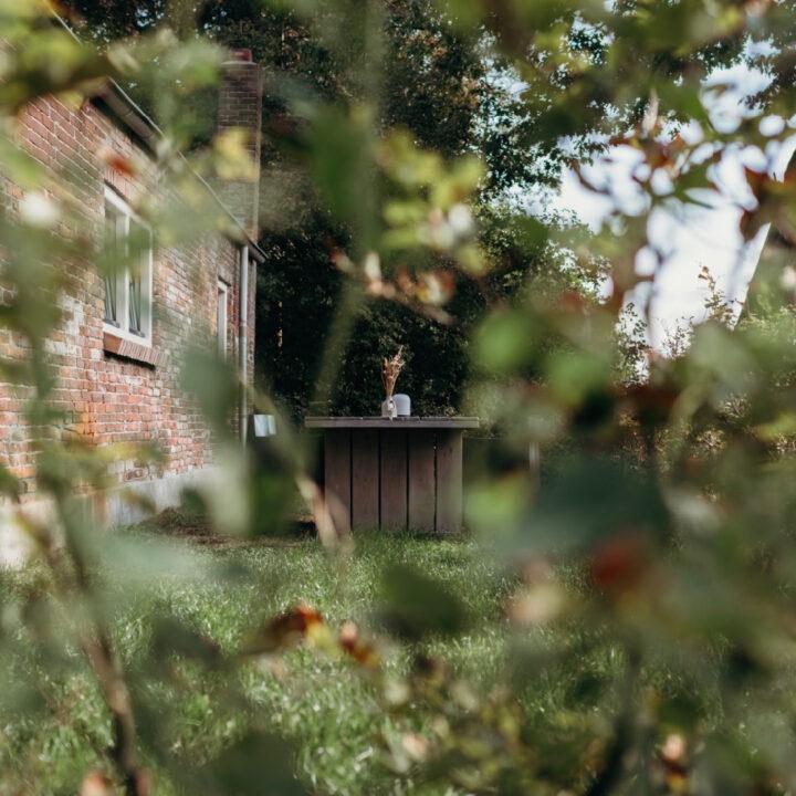 Bij het vakantiehuisje in Helenaveen is ook ruimte om buiten te zitten