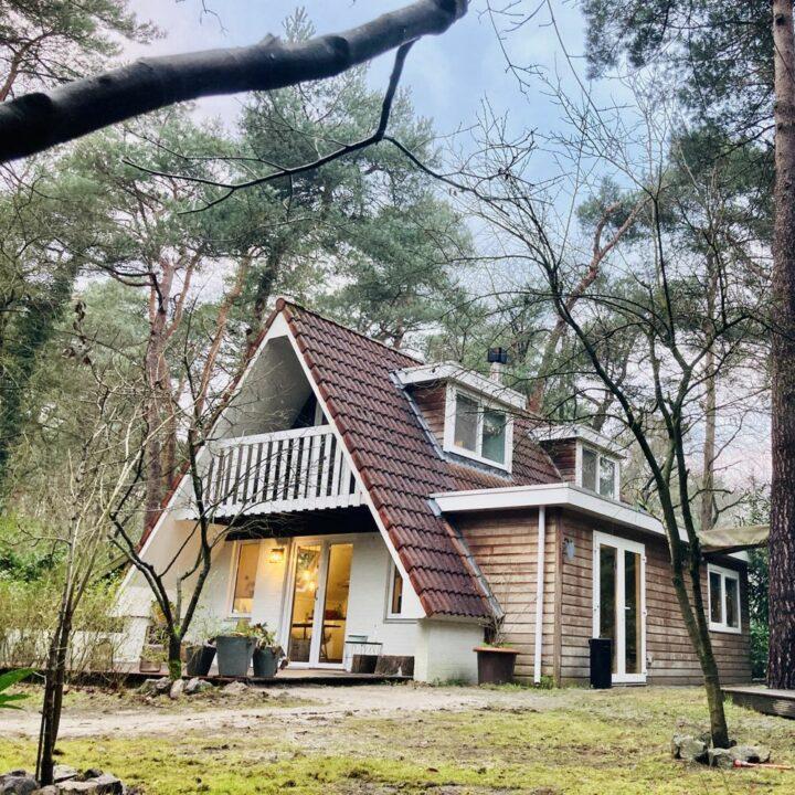 Vakantiehuisje in de natuur bij Ommen.