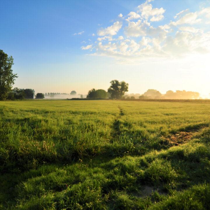 Uitzicht over het Brabantse land