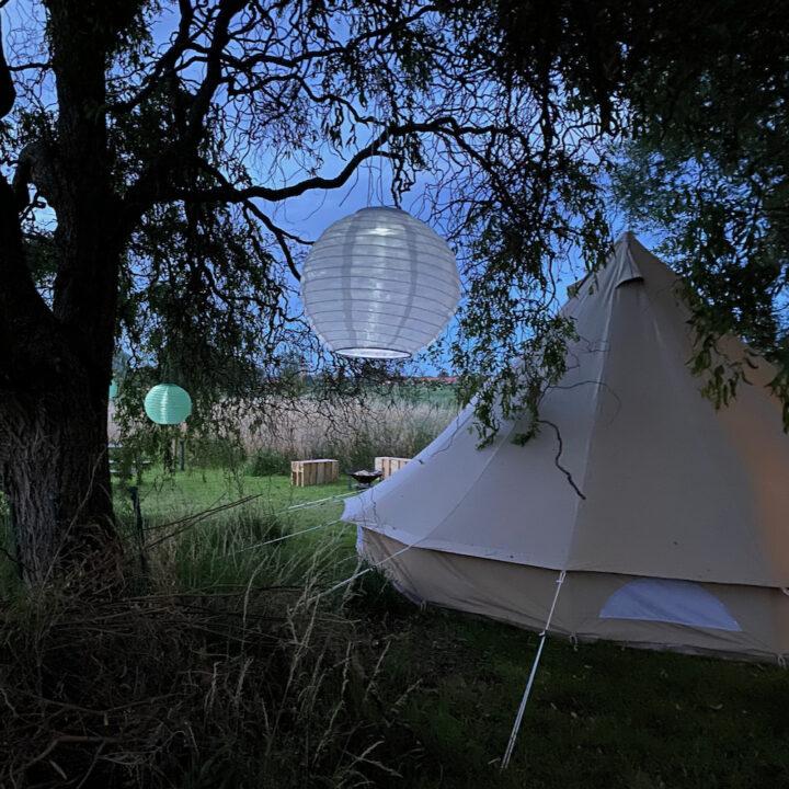 Bell tent met lampionnen in de boom