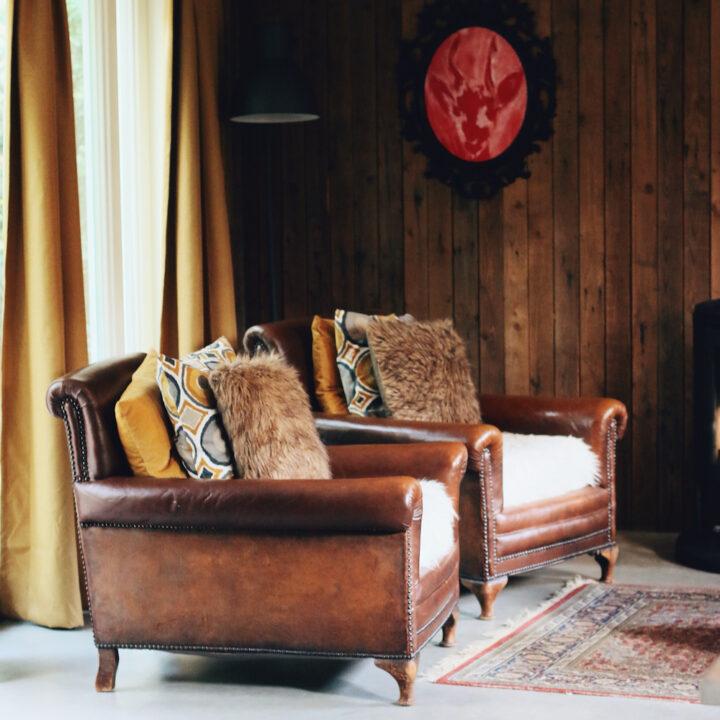 Leren stoelen in Boshuisje Putten