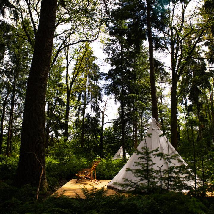 Tipi in het bos